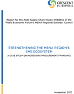 Case Study: Strengthening the MENA Region's SME Ecosystem